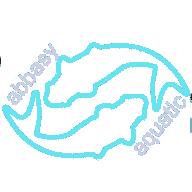 abbasy aquatic